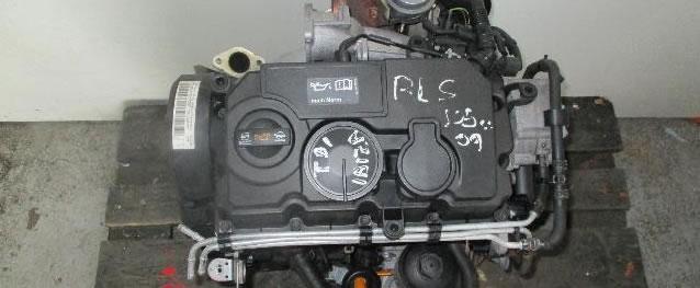Motor VAG Seat Ibiza 1.9TDI 105cv Ref. BLS
